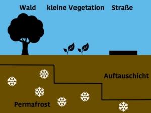 Grafik: Je weniger Vegetation an der Oberfläche vorhanden ist, desto stärker taut Permafrostboden auf.