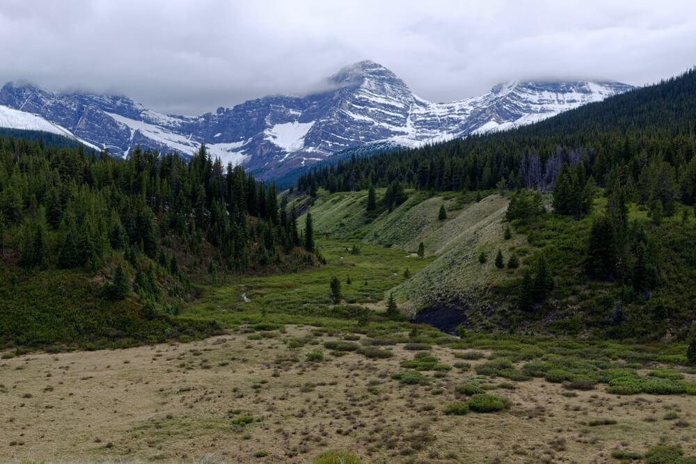 Blick auf einen Teil der Vermilion Range aus dem Cacade Valley