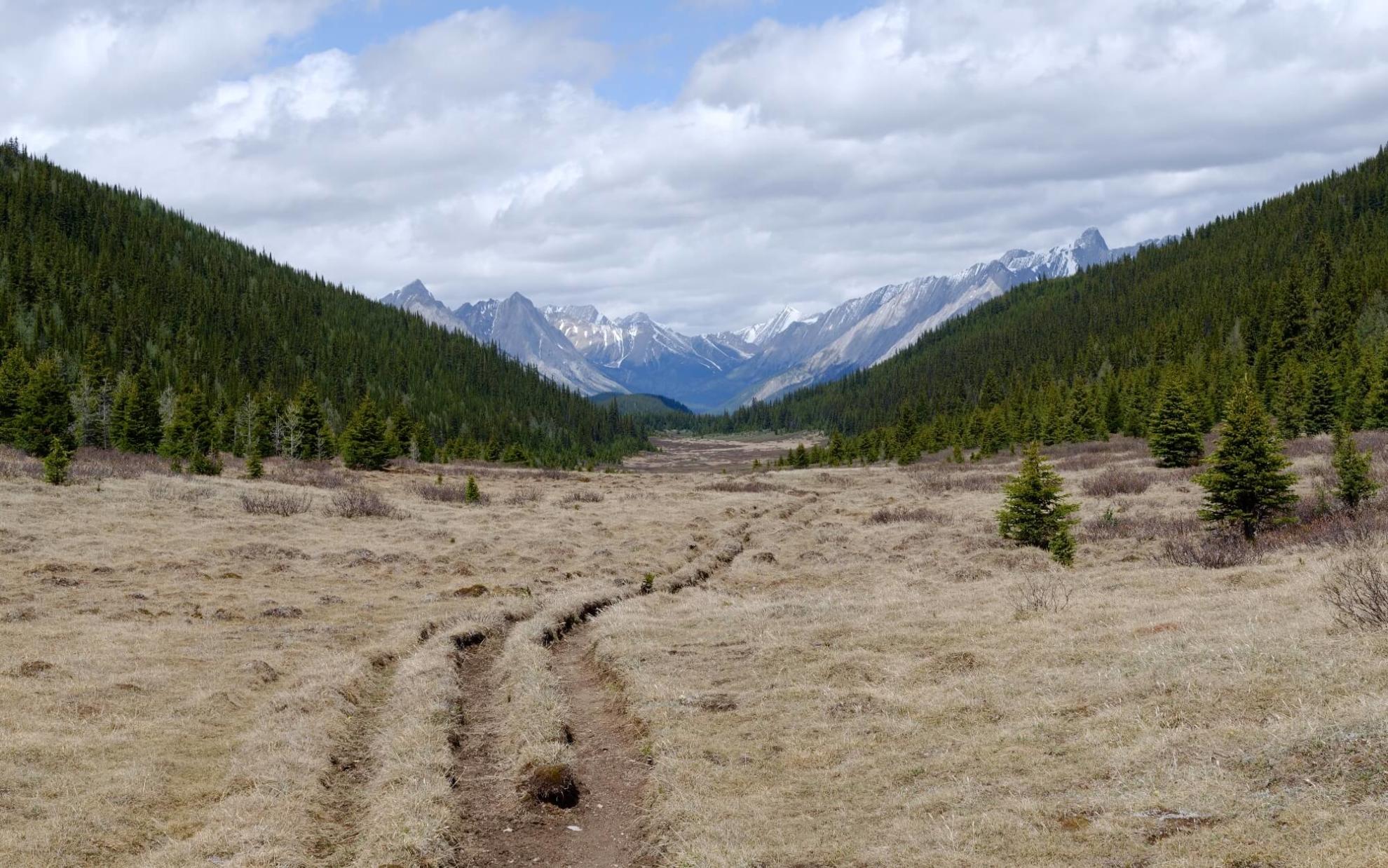Der Fourty Mile Summit im Banff-Nationalpark