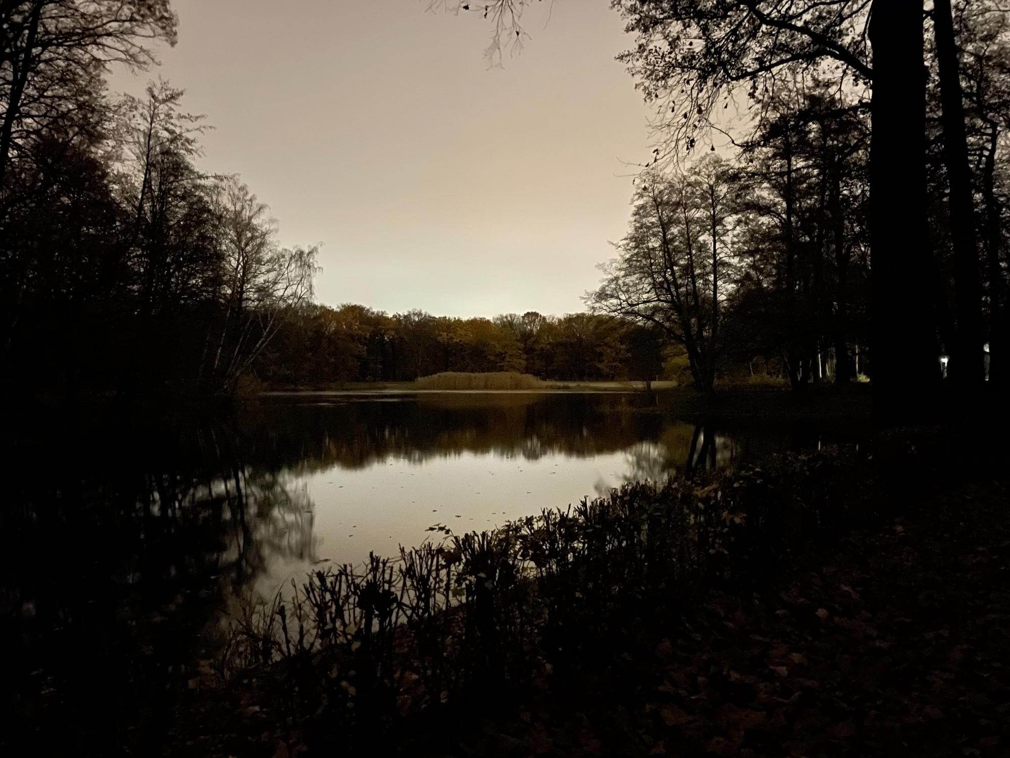Der Jungfernheideteich bei Dunkelheit, fotografiert mit einem iPhone 12 Pro Max.