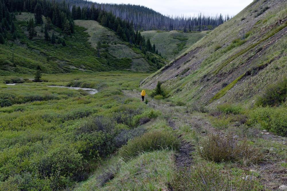 Wandern durch das Cascade Valley auf dem Weg zu den Bisons